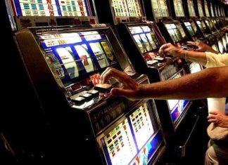 cronaca castano primo gioco dazzardo 7 milioni in un anno