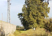 Il Parco dove il cacciatore stava sparando