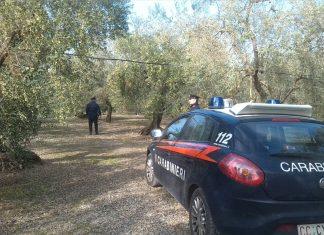 Spacciatore arrestato nelle campagne